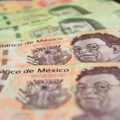 LA CORRUPCIÓN. Por Manuel J. Castillo Rendón